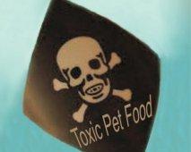 Behoed je hond van deze 10 outdoor gevaren