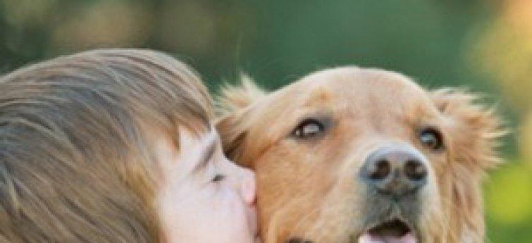 De beste hond voor kinderen