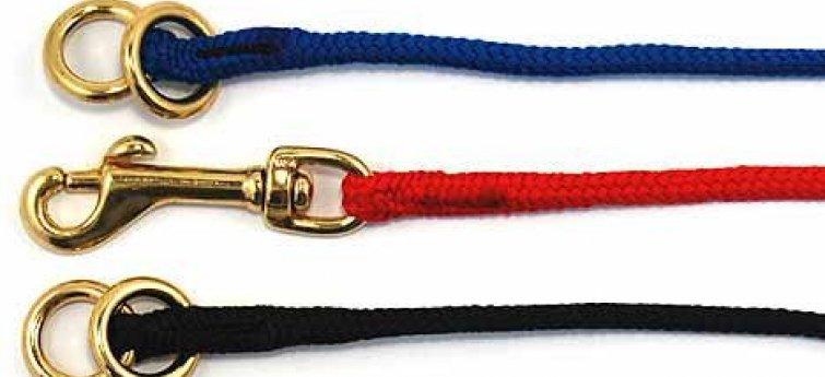Halsbanden hond