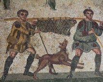 De geschiedenis van de hond