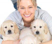 De ideale hondenfokker