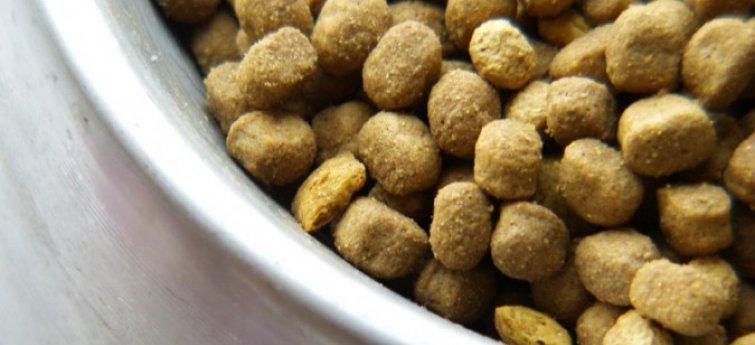 De voedingswaarde van commercieel hondenvoer