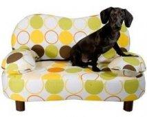 Help, mijn puppy springt op de zetel!