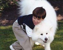 Het juiste huisdier is daarom nog niet je beste vriend…