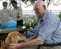 Honden met Alzheimer