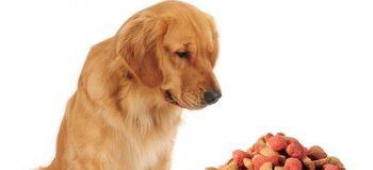 Hypoallergeen hondenvoer