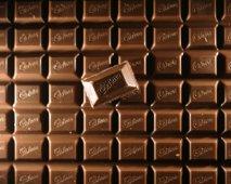 Kan chocolade dodelijk zijn voor je hond?