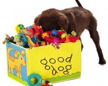 Kies het juiste hondenspeelgoed