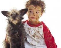 Kinderen en honden