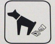 Moeilijke stoelgang of ontlasting bij honden