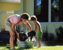 Ook je hond houdt van hygiëne