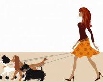 Samen op wandel - enkele tips voor baasje en hond