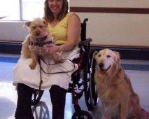 Therapie met behulp van honden