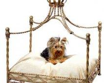 Tips bij de aankoop van een hondenbed
