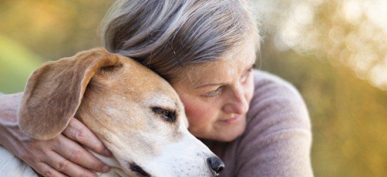 """Acht wonderbaarlijke dingen die honden bij mensen kunnen """"voelen"""""""